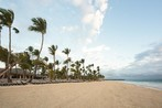 "Occidental Punta Cana - All Inclusive Resort - Barcelo Hotel Group ""Newly Renovated"""